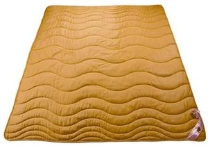 Одеяло Голдтекс Золотой верблюд 200х220